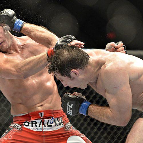 UFC Michael Bisbing