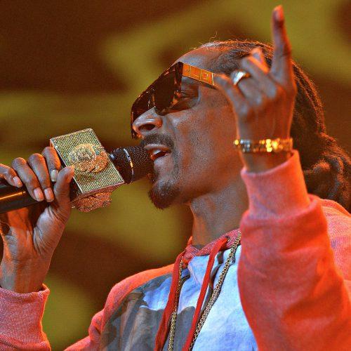 Snoop doggy dog avec un micro en or
