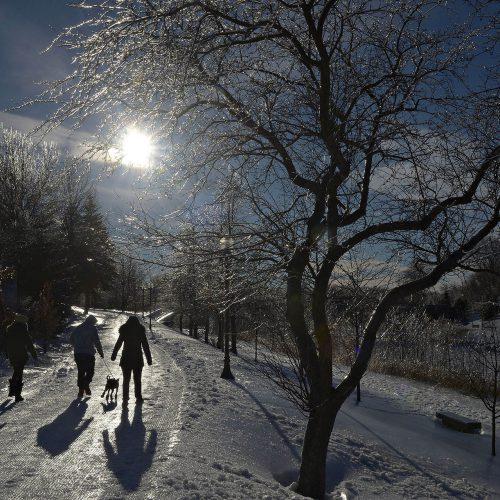 des gens marchent dans un sentier en hiver