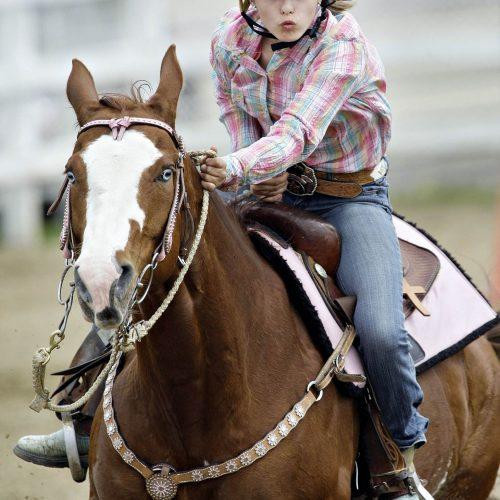 Une femme avec un casque sur un cheval brun de face