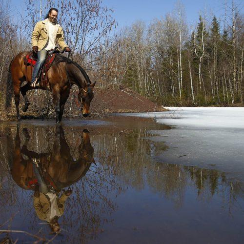 Un homme sur un cheval le fait boire de l'eau