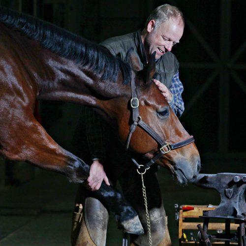 un homme avec un cheval brun