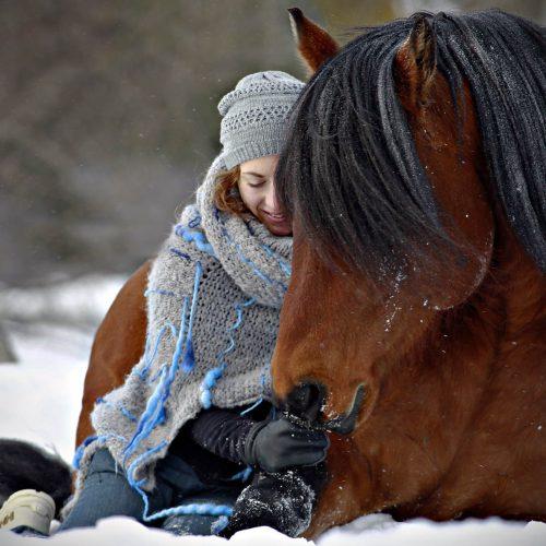 un cheval et une femme assis dans la neige