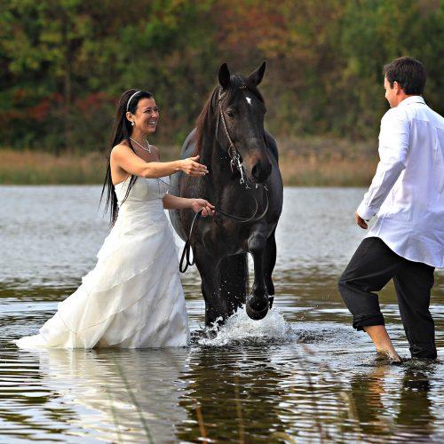 un couple de jeune marié dans l'eau avec un cheval et robe de mariée