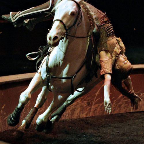Majolie Nadeau durant le spectacle Odysseo de Cavalia présenté a Laval acrobatie à cheval
